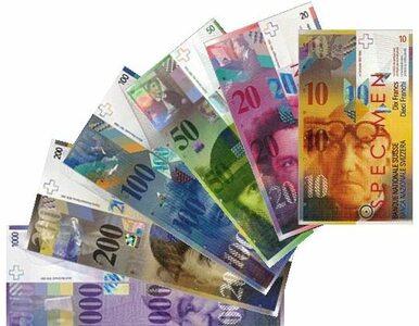 Pozwy zbiorowe ratunkiem dla frankowiczów?