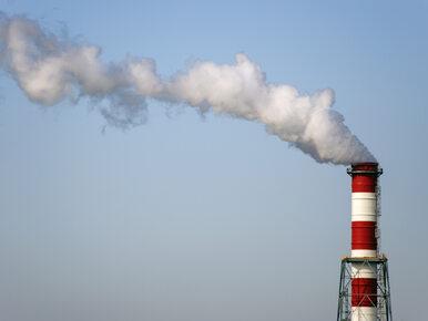 Repolonizacja w energetyce. PGE kupiła elektrociepłownie od Francuzów