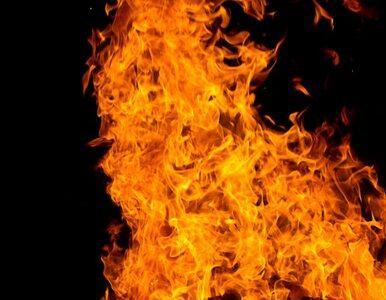 Płonie restauracja w Darłowie