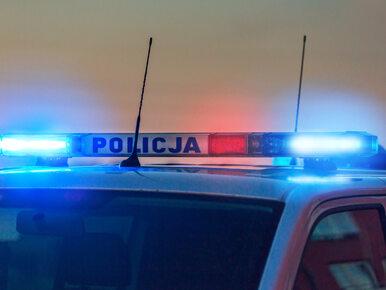 Zabił pieszego i uciekł. Policja szuka kierowcy ciemnego Audi