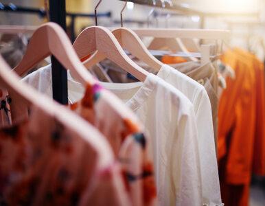 Jeszcze we wrześniu popularna sieć otworzy 20 nowych sklepów w Polsce