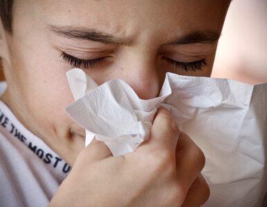 Co powoduje katar sienny? Tłumaczy lekarz