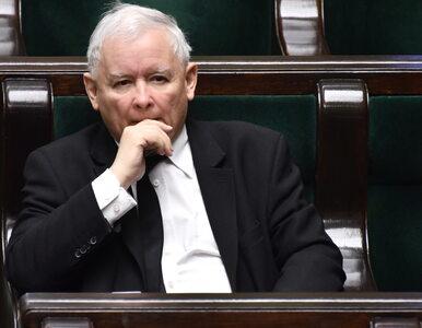 Spór ws. terminu wyborów w koalicji rządzącej. PiS ma się szykować na...