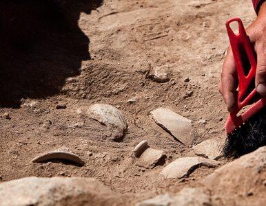 Polscy archeolodzy odkryli złoto w kurhanie sprzed 2,5 tys. lat....