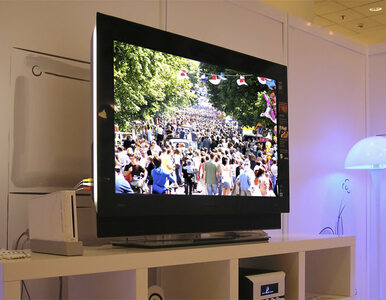Polacy kupują coraz większe telewizory