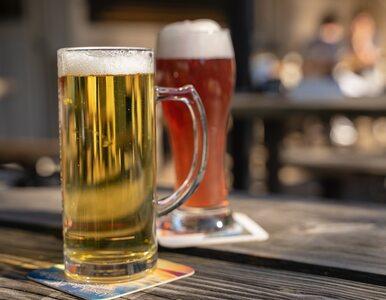 Alkohol a trening. Czy piwo pomoże na zakwasy?