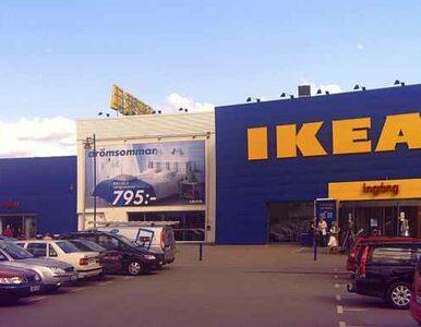 Podlaskie: IKEA będzie zatrudniać