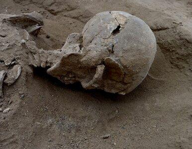 Najstarsza wojna w historii ludzkości. Odkryto ofiary starożytnej masakry