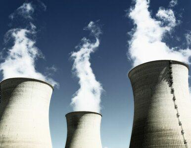 Bez referendum w sprawie elektrowni atomowej