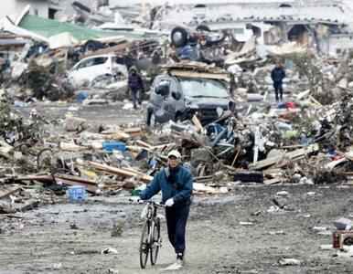 W Japonii znów zadrżała ziemia. Najsilniej od piątku