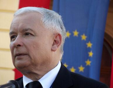 Jarosław Kaczyński o swojej kotce: Co noc wręcz domaga się, bym bawił...