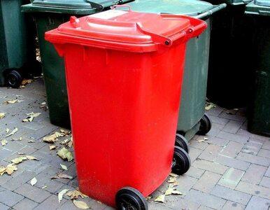 """Minister środowiska nie segreguje śmieci? """"Zdarzyła mi się wpadka,..."""
