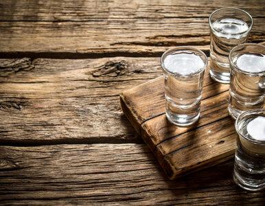 Ile kalorii ma wódka?