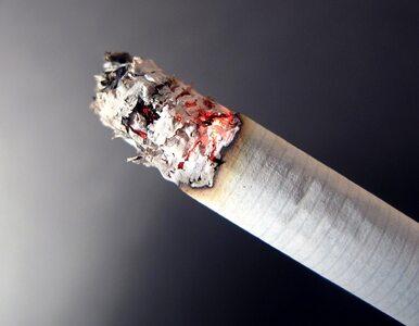 Zakażą mentolowych papierosów?