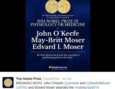 John O'Keefe, May-Britt Moser i Edvard Moser laureatami Nagrody Nobla