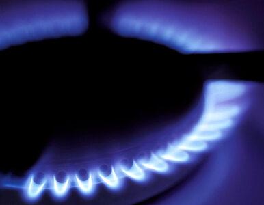 PGNiG z rekordową sprzedażą gazu