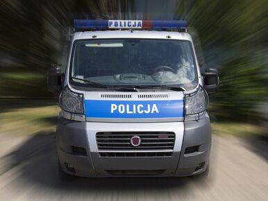 Ustawka pseudokibiców przy A1. Policja użyła gazu łzawiącego i gumowych kul