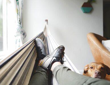 Jak skutecznie odpocząć? Większość z nas tego nie potrafi