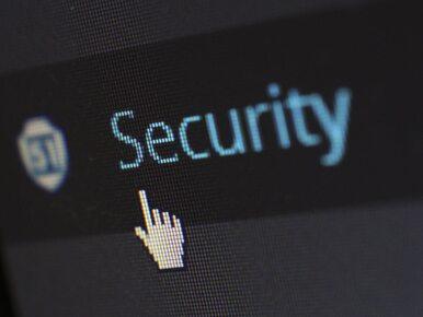 Międzynarodowy gang cyberprzestępców rozbity. Ukradli ponad 100 mln dolarów