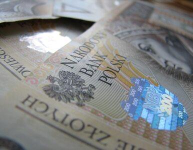Polskie sklepy i hurtownie rzucają wyzwanie zagranicznym koncernom