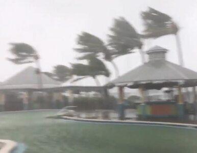 Huragan Irma uderzył we Florydę. Prezydent ogłosił stan klęski żywiołowej