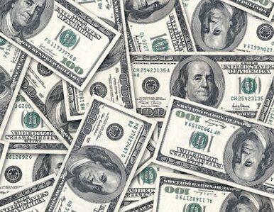 USA: 13 milionów dolarów za 12 lat w więzieniu