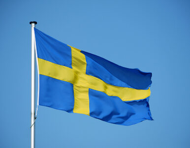 """Szwecja nie zamyka szkół i granic. """"Koronawirus jest bezpieczny,  bo..."""