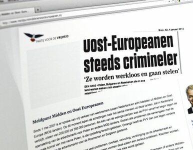 """""""Antypolski portal zaszkodzi holenderskim firmom"""""""