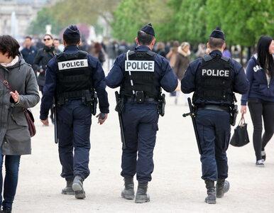 Komisariat policji został ewakuowany. Z powodu… inwazji pcheł