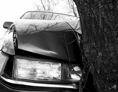 Wypadek na al. Krakowskiej. Samochód uderzył w drzewo