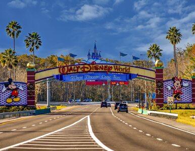 """Zarażonych coraz więcej, a Disney World się otwiera, """"bo musi"""""""