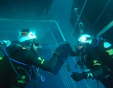 Costa Concordia: uwolnić... misia