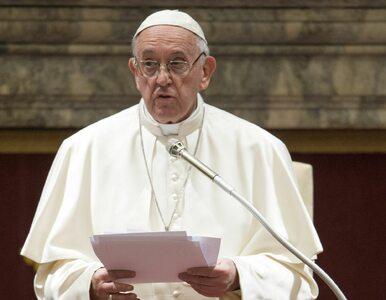 """Papież Franciszek piętnuje konsumpcjonizm. """"Ludzkość stała się chciwa i..."""