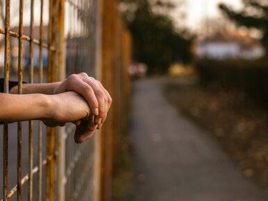 Polka w irlandzkim więzieniu o zaostrzonym rygorze. Sprawą zainteresował...