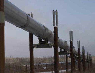 Za ile Rosja sprzeda Ukrainie gaz? Gazprom nic nie wie o obniżce ceny