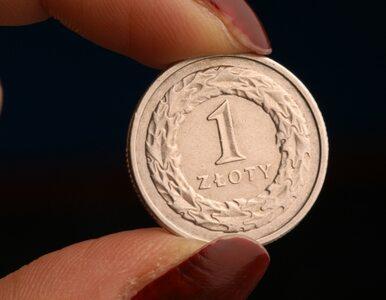 Deficyt budżetowy w 2009 roku nie przekroczy 30 miliardów zł