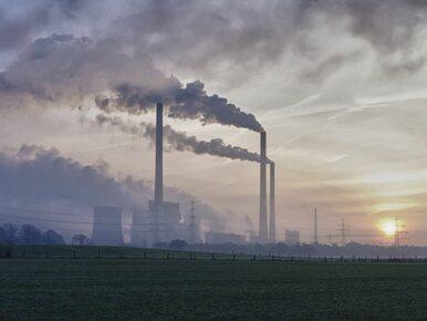 Polska ratyfikowała porozumienie klimatyczne z Paryża