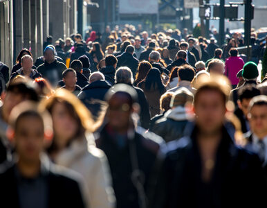 W 2014 roku Polska i Wielka Brytania przyjęły najwięcej imigrantów