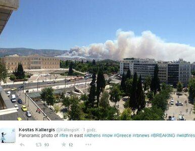 Potężny pożar na przedmieściach Aten. Ewakuowano dwie wsie