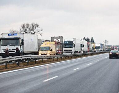 Nowak: autostrady biorę na klatę. A2 jest praktycznie gotowa