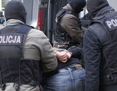 Akcja policji, straży granicznej i USK. Rozbili grupę z Wołomina