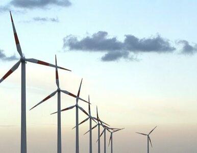 Dzięki ekologicznym innowacjom Europa zaoszczędzi pół biliona euro?