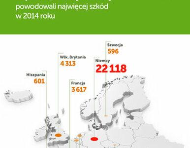 Polscy kierowcy postrachem Europy? W Niemczech spowodowaliśmy ponad 20...