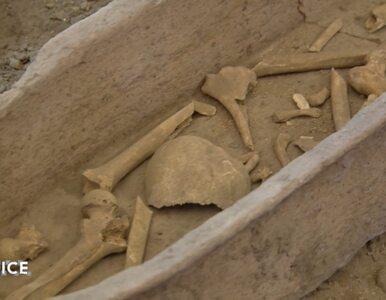 W Rzymie odnaleziono liczące 2 tys. lat relikwie św. Piotra? Natrafił na...