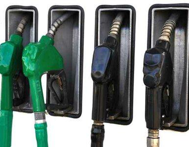 Lotos i Orlen zmniejszą zapasy paliwa. Będziemy tankować taniej?
