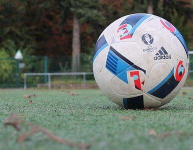 UEFA o wznowieniu rozgrywek ligowych. Holandia i Francja swoje już...