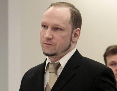 Morderca dzieci Breivik chwalił polskiego króla