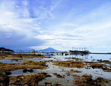 Dwie indonezyjskie wyspy znalazły się pod wodą. Zagrożone są już cztery...