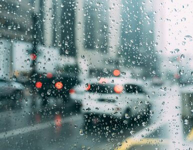 Deszcze i burze. Pogoda w najbliższych dniach nie będzie nas rozpieszczać